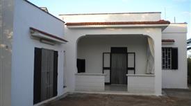 Villa indipendente con uliveto