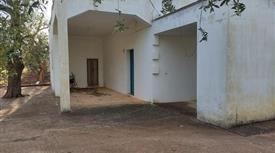 Casa di campagna con uliveto in vendita