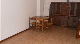 Affittasi ampio appartamento zona San Miniato (Siena)