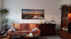 Appartamento Arredato a Vedano Olona
