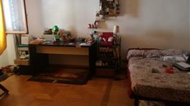 Affittasi ampia stanza singola
