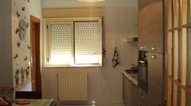 Affitto di appartamento in viale Gugliemo Borremans, 3