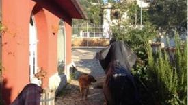 Casa indipendente in vendita in via di Campomaggiore, 130