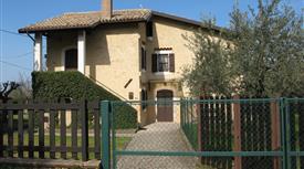 Casa di campagna con giardino e oliveto