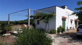 Casa indipendente in vendita  Cavallerizza