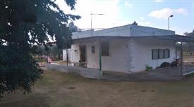 Affitto con riscatto Casa, trullo, e 660 alberi di ulivo