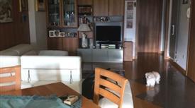 Ampio appartamento