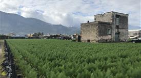 Casale in 6000mq di terreno
