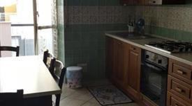 Singola in affitto