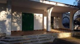 Villa indipendente e terreno con ulivi secolari