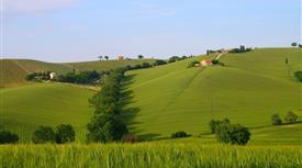 Villino due livelli con 10.000mq  di terreno agricolo