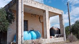 Casa con terreno oliveto in vendita