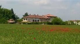 Proprietà rustica in vendita in località località pozzolo formigaro s.n.c, Novi Ligure