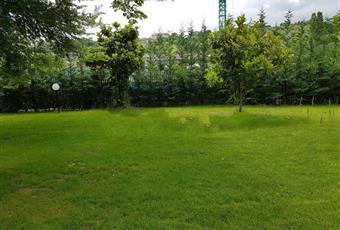 Il giardino è con erba Abruzzo PE Pescara