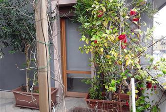 Splendida terrazza, con ingresso dal salone, irrigazione automatica, affaccio su strada principale. Veneto PD Padova