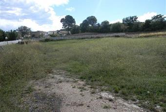 Il giardino è con erba Puglia FG Castelnuovo della Daunia