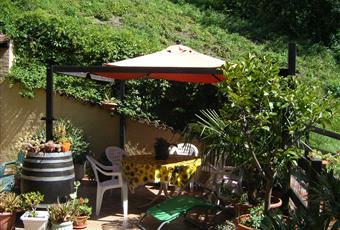Giardino ampio disposto su 3 lati dell'abitazione. Piemonte AL Belforte Monferrato