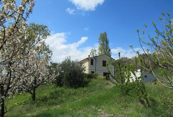 Foto ALTRO 15 Abruzzo TE Atri