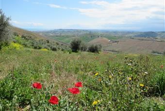 Foto ALTRO 14 Abruzzo TE Atri