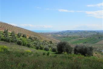 Foto ALTRO 13 Abruzzo TE Atri