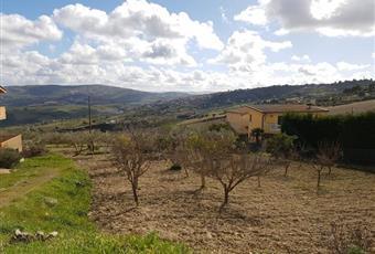 Il giardino è con erba Sicilia AG Aragona