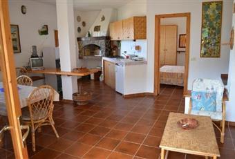 Il pavimento è piastrellato, il salone è con camino, il salone è luminoso Sardegna VS Arbus