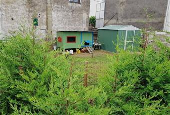 Foto ALTRO 17 Piemonte VC Motta de' conti