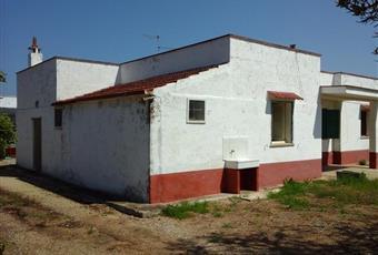 Rustico, Casale in Vendita in CONTRADA FIORENTINO S/N a Carovigno