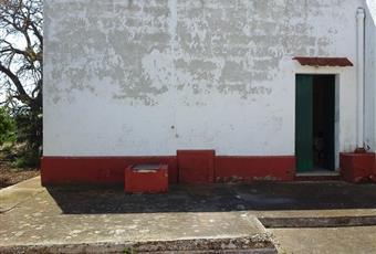 Foto ALTRO 3 Puglia BR Ostuni