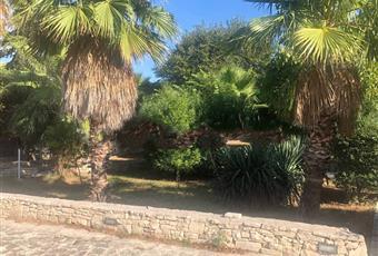 Foto ALTRO 14 Puglia BA Bari
