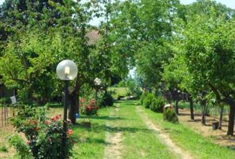 Foto GIARDINO 4 Piemonte AL Alessandria
