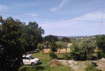 Il giardino è con erba Emilia-Romagna RN Coriano