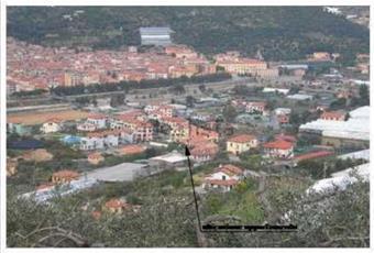 Foto ALTRO 12 Liguria IM Taggia