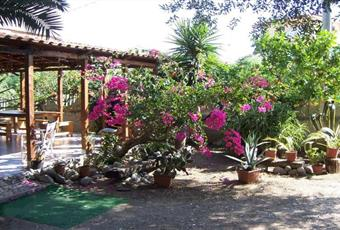 Il giardino è con pergola Calabria VV Joppolo
