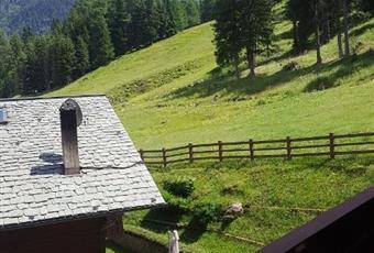 Foto ALTRO 2 Lombardia SO Valfurva