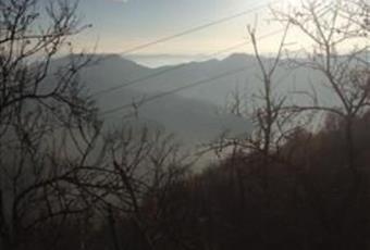 Foto ALTRO 8 Piemonte AL Cavatore