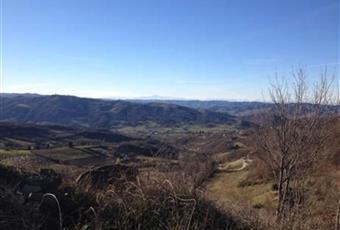 Foto ALTRO 7 Piemonte AL Cavatore