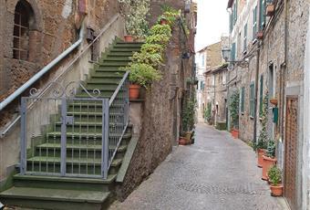 Foto ALTRO 26 Lazio VT Blera
