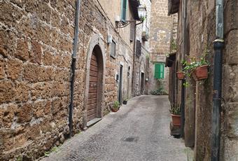 Foto ALTRO 27 Lazio VT Blera