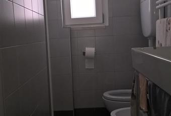 Il pavimento è piastrellato, il bagno è luminoso con finestra sanitari nuovi Marche PU Urbino