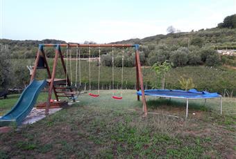 Il giardino è con erba Veneto VR Montecchia di Crosara