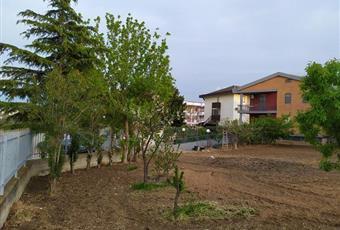 Foto ALTRO 4 Puglia FG San severo
