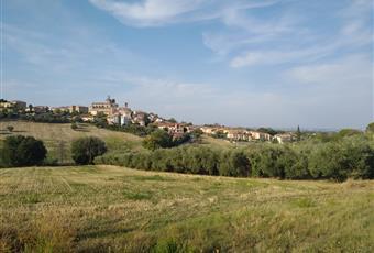 Foto ALTRO 4 Marche AN Monte San Vito