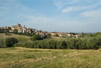 Foto ALTRO 5 Marche AN Monte San Vito