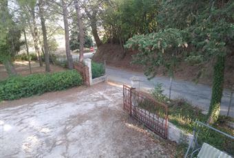 Foto ALTRO 3 Marche AN Monte San Vito