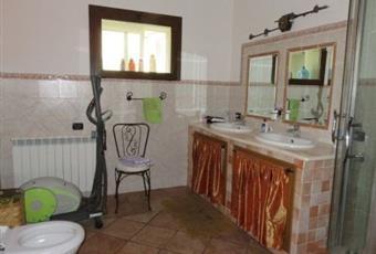 Il pavimento è piastrellato, il bagno è luminoso Sardegna SS Florinas