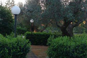 Foto GIARDINO 7 Puglia TA Grottaglie