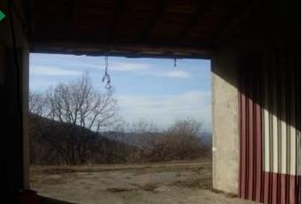 Foto ALTRO 5 Piemonte AL Albera ligure