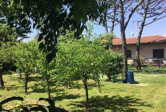 Foto del lato di ingresso strada e del vasto terreno. Lombardia MI Pogliano Milanese