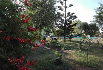 Foto GIARDINO 8 Puglia BR Brindisi